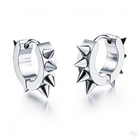 Titanium steel earrings TE183