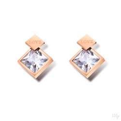 Titanium steel earrings TE190