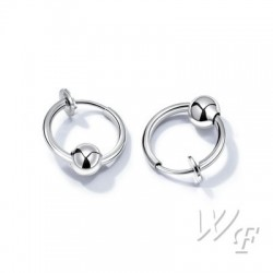 Titanium steel earrings TE194