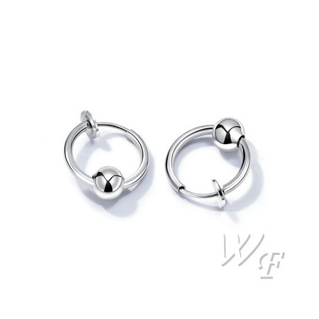 Titanium steel earrings TE191