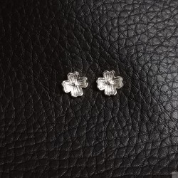 Earrings SE761