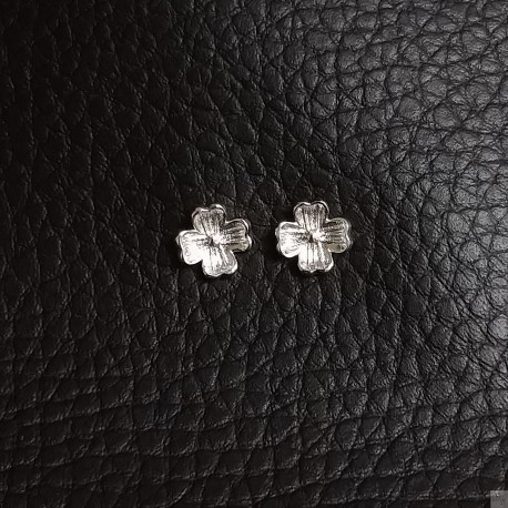 Earrings SE760