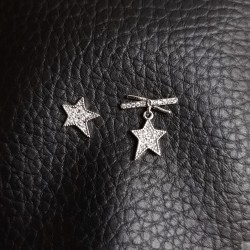 Earrings SE821