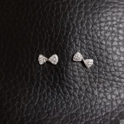 Earrings SE825