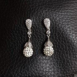 Earrings SE837