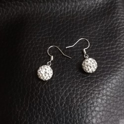 Earrings SE845