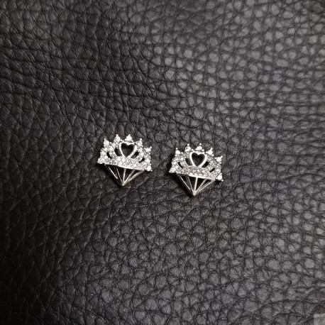 Earrings SE870