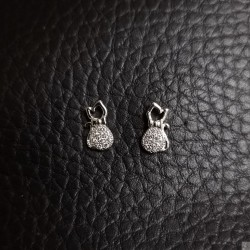 Earrings SE880
