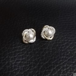 Earrings SE899