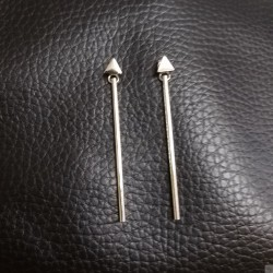 Earrings SE904