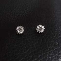 Earrings SE906