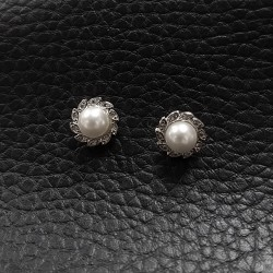 Earrings SE979