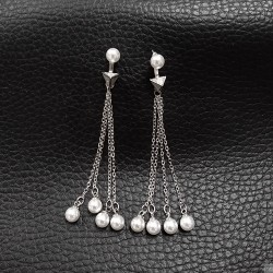 Earrings SE982
