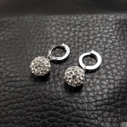 Earrings SE989