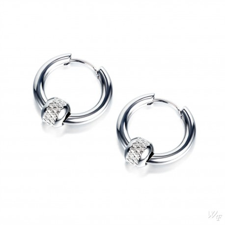 Titanium steel earrings TE525