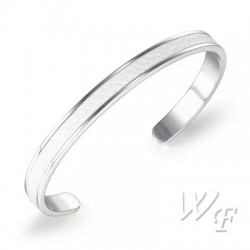 Titanium steel bangle TMB118