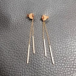Titanium steel earrings TE535