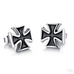 Titanium steel earrings TE121